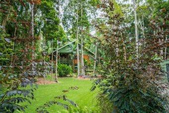 1 Gregory Terrace, Kuranda, Qld 4881 Beautiful 4 bed, 2 bath, pole home, pool, fully fenced.
