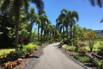 "77 Kelly Road, Speewah, Qld 4881 Seeing is Believing, The Ultimate Tropical Resort Home on 5 Stunning Acres ""Etteleah Park"""