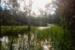 IMG_1710 2413 kennedy dam dusk